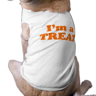 Soy UNA INVITACIÓN Ropa De Mascota