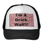 ¡Soy una pared de ladrillo!!! Gorro
