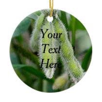 Soybean Ornament - Template