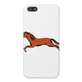 spa 169 iPhone 5 cover