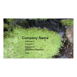 Spa Pond Business Card