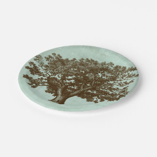 Spa Tree IV Paper Plate
