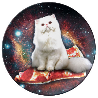 Space cat pizza plate