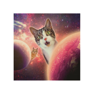 """""""Space Cats"""" LOL Funny 8""""x8"""" Wood Wall Art"""