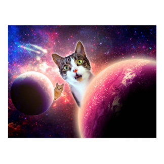 Space Cats LOL Funny Postcard