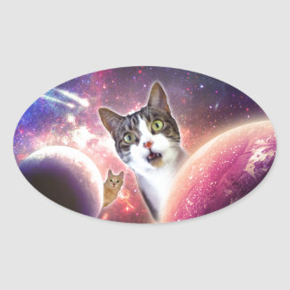 Space Cats LOL Funny Oval Sticker