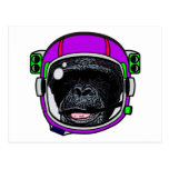 Space Chimp Postcard