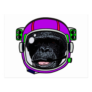 Space Chimp Postcard