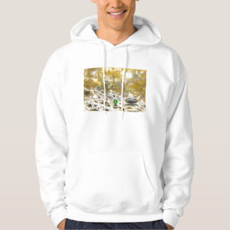 Space Exploration Hoodie