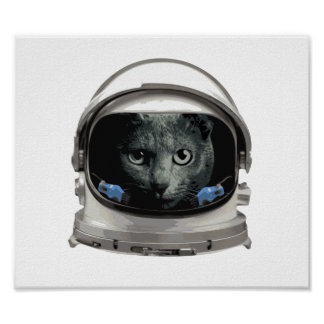 Space Helmet Astronaut Cat Poster