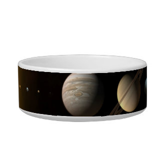 Space Pet Bowl