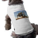 Space Shuttle Atlantis (STS-122) - launch pad Dog T Shirt