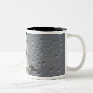 Space Shuttle Endeavour 14 Two-Tone Coffee Mug