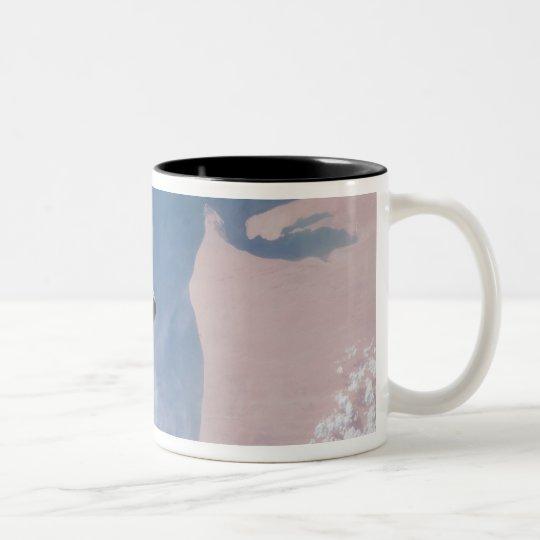 Space Shuttle Endeavour 19 Two-Tone Coffee Mug