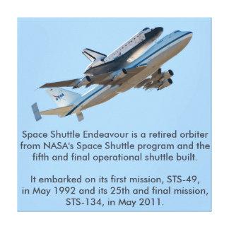Space Shuttle Endeavour NASA Canvas Print