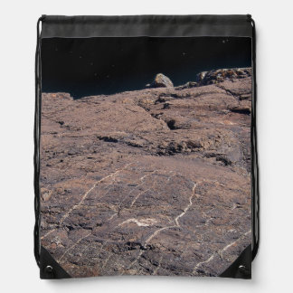 Space To Climb Drawstring Backpack