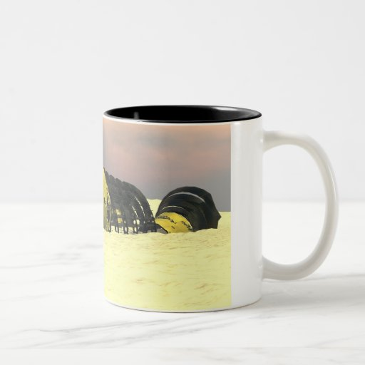 Spacewreck Mug