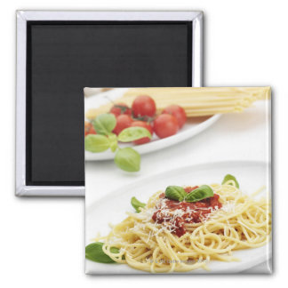 Spaghetti with tomato sauce and basil magnet