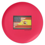 Spain and United States Flag on Plate