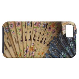 Spain, Cadiz Province, Seville. Historic Santa iPhone SE/5/5s Case