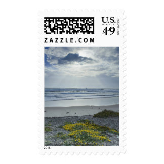Spain Coastline with Yellow Flowers and Sun Beams Stamp