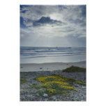 Spain Coastline with Yellow Flowers and Sun Beams Posters