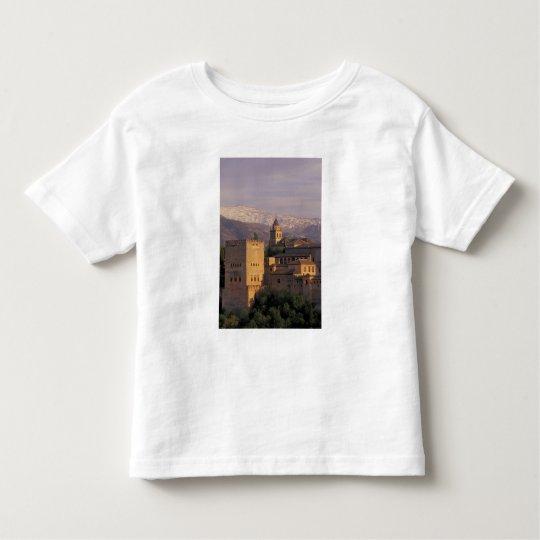 Spain, Granada, Andalucia The Alhambra, 2 Toddler T-shirt