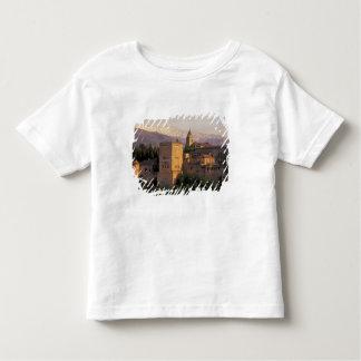 Spain, Granada, Andalucia The Alhambra, Toddler T-shirt