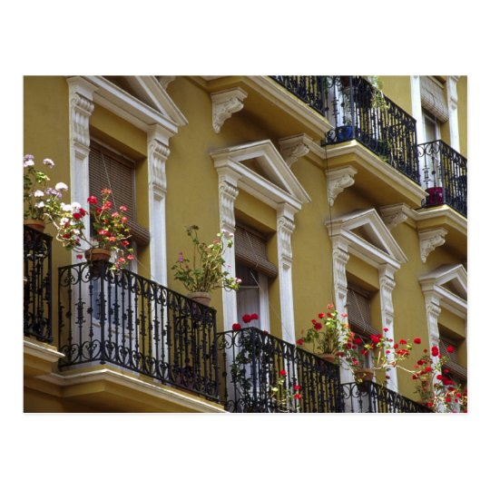 Spain, Sevilla, Andalucia Geraniums hang over Postcard