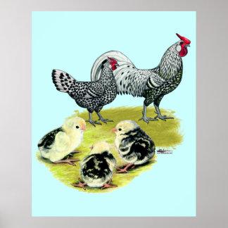 Spangled Hamburg Family Print