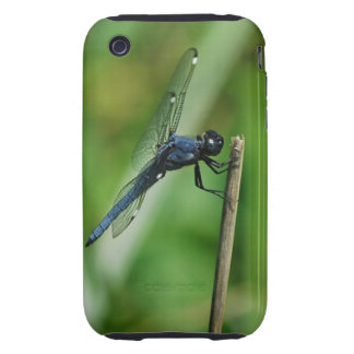 Spangled Skimmer Dragonfly iphone 3 case mate