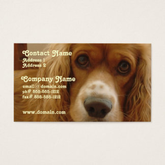 Spaniel Breed Business Card