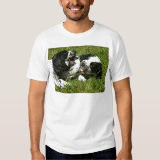 Spaniel Fun T Shirt