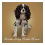 SPANIEL POSTERS