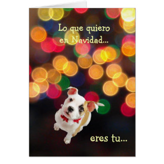 Spanish: All I want for Christmas...is you Greeting Card