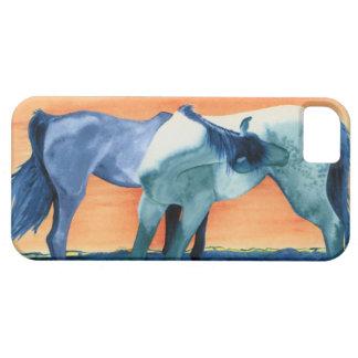 Spanish Barbs Mustangs Horses iPhone 5 Covers