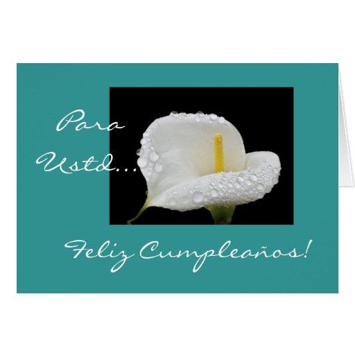 Greeting Cards: www.zazzle.com/spanish_birthday_feliz_cumpleanos_greeting_cards...