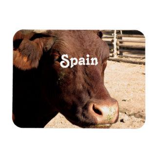 Spanish Bull Rectangular Magnet
