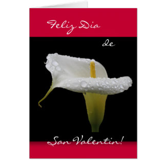 Spanish: Calla Valentine's Day Card