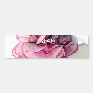 Spanish Carnations Bumper Stickers