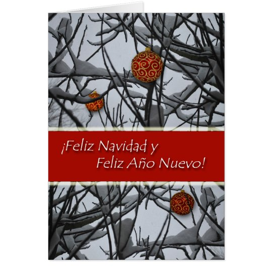 Spanish Christmas, Ornaments in Snow Card