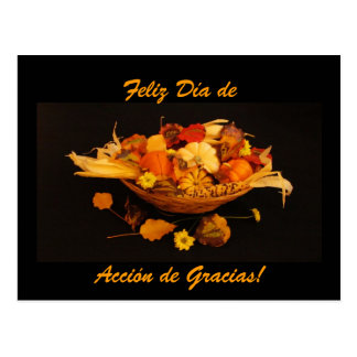 Spanish: Dia de Accion de Gracias Postcard
