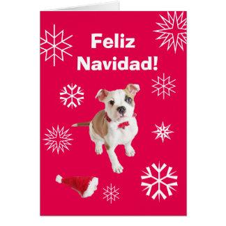 Spanish: Feliz Navidad! Merry Christmas! Greeting Card