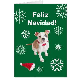 Spanish Feliz Navidad Merry Christmas Card
