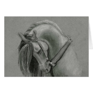 Spanish Horse Drawing by Lucinda Knowlton Card