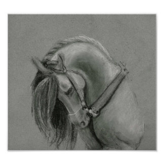 Spanish Horse drawing poster