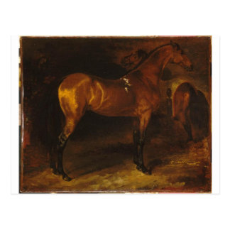 Spanish horse in a stable by Theodore Gericault Postcard