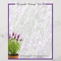 Spanish Lavender Letterhead