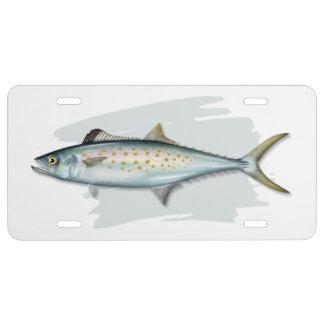 Spanish Mackeral License Plate