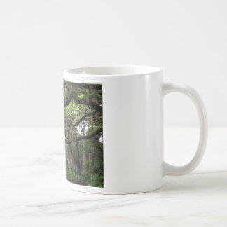 Spanish Moss Adorned Live Oak Coffee Mug